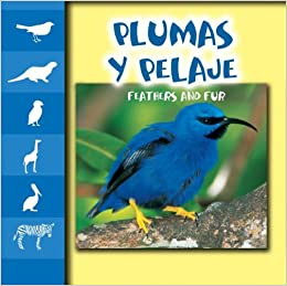 Plumas Y Pelaje / Feathers and Fur (Let's Look at Animal