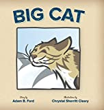 img - for Big Cat book / textbook / text book