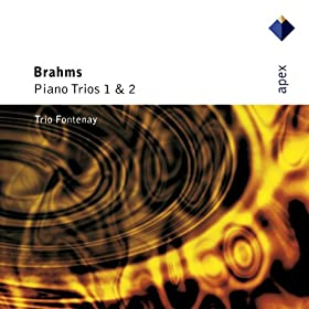 Brahms : Piano Trio No.2 in C major Op.87 : IV Finale - Allegro giocoso