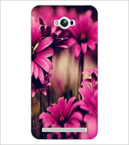 PrintDhaba Flower D-2035 Back Case Cover for ASUS ZENFONE MAX ZC550KL (Multi-Coloured)