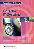 Image de Basiswissen IT Berufe Einfache IT Systeme: Schülerband
