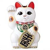 白小判 招き猫 10号右手 開運