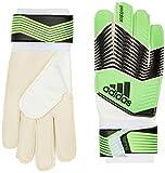 Adidas Predator Training Glove - Solar Green/Black/White, Size 7