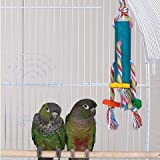 Brainy Bird Teenies Series Bird Toys Tower 10IN