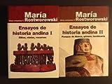 img - for Ensayos de historia andina (Serie Historia andina) (Spanish Edition) book / textbook / text book