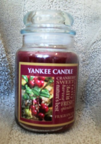 Yankee Candle 22 oz Large Housewarmer Jar Candle FALL FRUIT