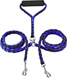 Buy No Tangle Dual Leash