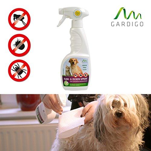 biocin-animali-all-in-one-350ml-biospray-100-agenti-di-erbe-naturali-per-animali-domestici-trattamen
