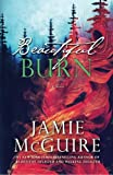 img - for Beautiful Burn: A Novel (The Maddox Brothers Book 4) book / textbook / text book