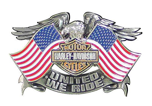 Harley-Davidson Men's United We Ride Pin, Eagle American Flags Graphic P125844
