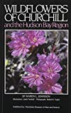 Wildflowers of Churchill: And the Hudson Bay Region (0920704158) by Johnson, Karen
