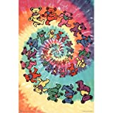 (24x36) Grateful Dead (Spiral Bears) Music Poster Print