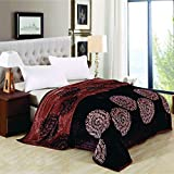 Berry Super Soft New Castle Blanket Double Bed Size 230cm X 250cm Super Lite Super Soft Blanket(Made In India)(Pack Of 1 Piece) - B074J7F4NS