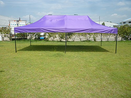American Phoenix Canopy Tent 10x20 foot Purple Party Tent Gazebo Canopy Commercial Fair Shelter Car Shelter Wedding Party Easy Pop Up - Purple (10x20 Canopy Commercial compare prices)