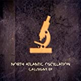 Calling Signs by NORTH ATLANTIC OSCILLATION (2009-08-11)