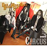 Dan Baird And Homemade Sin Circus Life