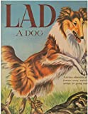 img - for LAD: A DOG - adapted for children by Bella Koral. book / textbook / text book