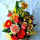 季節のお花おまかせフラワーアレンジメントB(オレンジ系)「誕生日」「お祝い」「花の産地千葉県館山から」