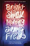 James Frey Bright Shiny Morning