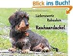 Liebenswerte Rabauken Rauhaardackel /...
