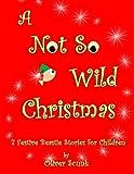 A Not So Wild Christmas
