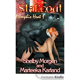 Memphis Heat: Stakeout (English Edition)