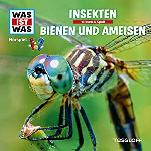 Insekten / Bienen und Ameisen (Was ist Was 37) Hörspiel