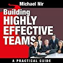 Building Highly Effective Teams: How to Transform Virtual Teams to Cohesive Professional Networks - A Practical Guide Audiobook by Michael A. Nir Narrated by Dave Wright