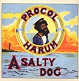 A Salty Dog by SALVO (2009-05-26)