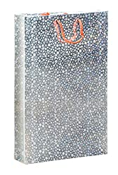 BDPP Premium Silver Holographic Gift Paper Carry Bags-(Pack Of 10)-Size 11.5 X 8.5 Inches