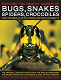 img - for Explore the Deadly World of Bugs, Snakes, Spiders & Crocodiles: The Dramatic Lives And Conflicts Of The World'S Strangest Creatures Shown In 1500 Amazing Close-Up Photographs book / textbook / text book