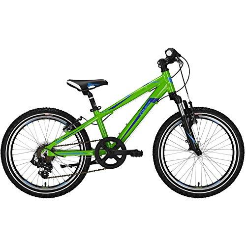 Conway MS 100 20 Zoll/26 cm grün/blau Mountainbike