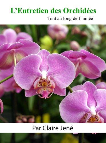 lentretien-des-orchidees-tout-au-long-de-lannee