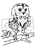 A4 Owl Wall Stencil Template WS00004483