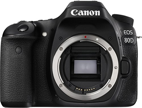 Canon-EOS-80D-Fotocamera-Reflex-Digitale-da-242-Megapixel-con-Obiettivo-EF-S-18-55mm-IS-STM-NeroAntracite