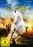 Tornado und der Pferdeflüsterer