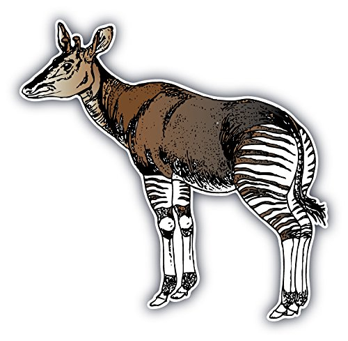 Okapi Animal Art Decor Bumper Sticker 5'' x 5''