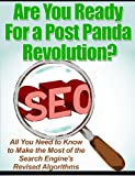 SEO-Search Engine Optimizationn: Get Ready for the Post Panda Revolution!