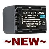 Neewer Replacement Rechargeable Battery Pack For Sony Handycam Dcr-Dvd115E Dcr-Dvd202E Dcr-Dvd203 Dcr-Dvd203E Dcr-Dvd205 Dcr-Dvd205E Dcr-Dvd304E Dcr-Dvd305 Dcr-Dvd305E