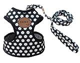 Rant Bell 小型犬 ハーネス リード セット ドット柄 かわいい 肉球 (黒 L)