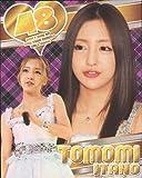 AKB48 【板野友美 】 2013年度版A3カレンダー