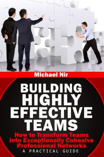 Building Highly Effective Teams: How to Transform Virtual Teams to Cohesive Professional Networks - a practical guide (T