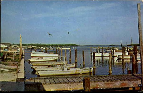 Fishing Boats in Cortez, Florida