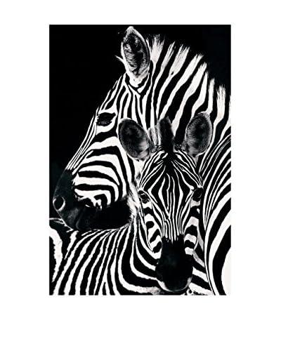 ArtopWeb Panel Decorativo Zebra & Foal