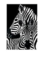 ArtopWeb Panel Decorativo Zebra & Foal