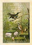 FAMOUS AUSTRALIAN ART - ELLIS ROWAN, 1848 - 1922 - A BIOGRAPHICAL SKETCH (0947207058) by COLLINS, KATE