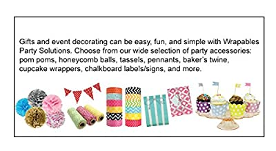 "Wrapables 8"" Set of 5 Tissue Pom Poms Party Decorations for Weddings, Birthday Parties Baby Showers and Nursery Décor"