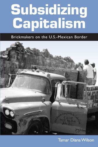 Subsidizing Capitalism: Brickmakers on the U.S.-Mexican Border (Suny Series in the Anthropology of Work)