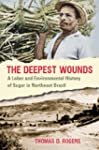 The Deepest Wounds: A Labor and Envir...