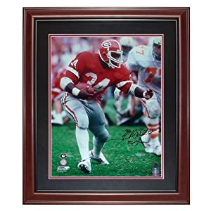 Herschel Walker Autographed Georgia Bulldogs (Stiff Arm) Deluxe Framed 16x20 Photo w ... by PalmBeachAutographs.com